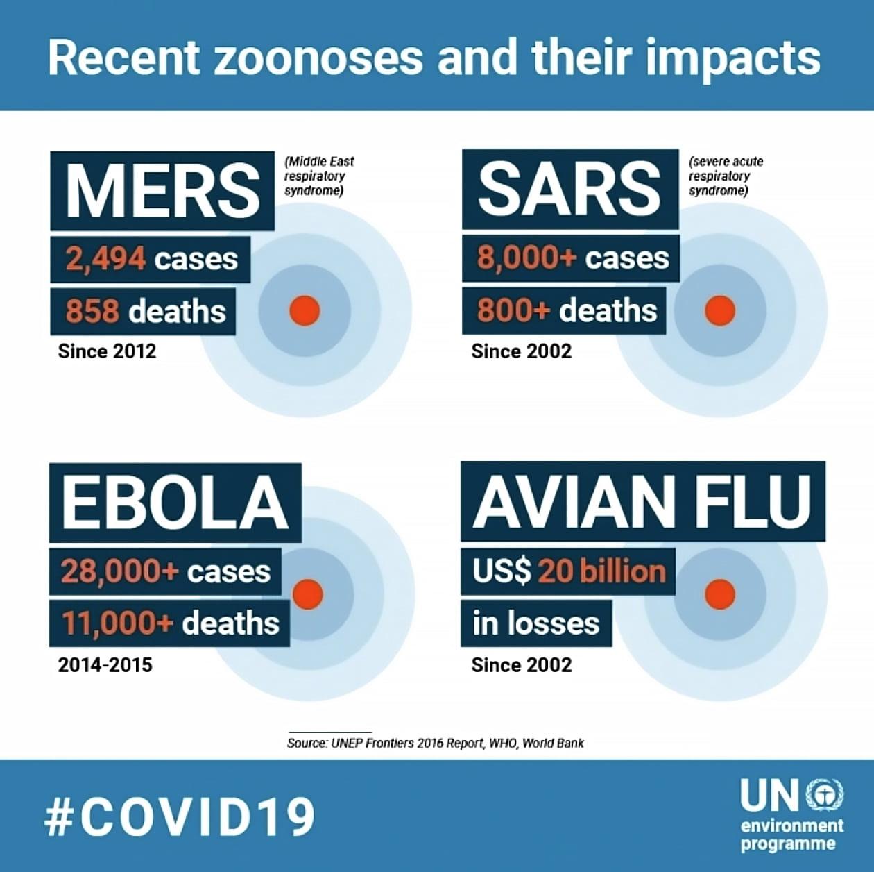 infogreafica da ONU sobre várias doenças zoonóticas