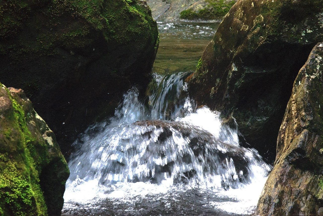 imagem de rio formado na mata atlântica