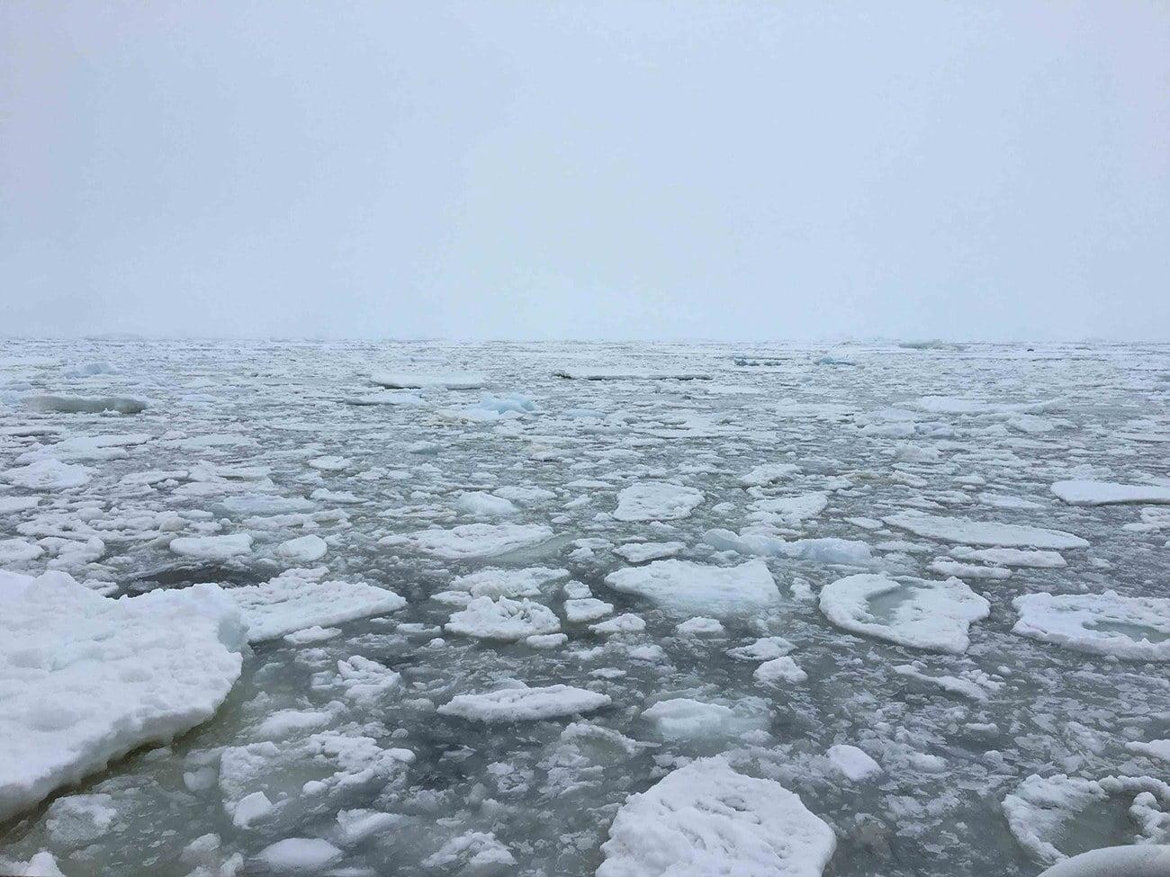 imagem de gelo no mar austral