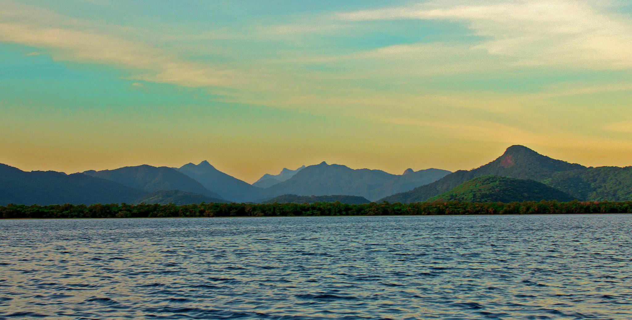 imagem da baía de Guaraqueçaba cercada de mata atlântica
