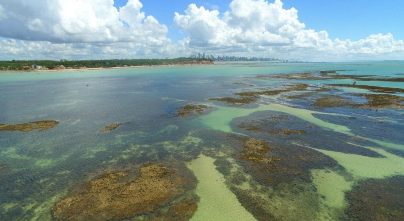 imagem de Corais da Ponta do Seixas, Paraíba