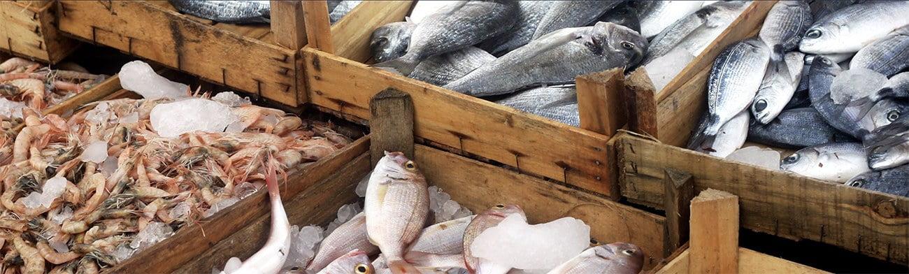 imagem de peixes no mercado
