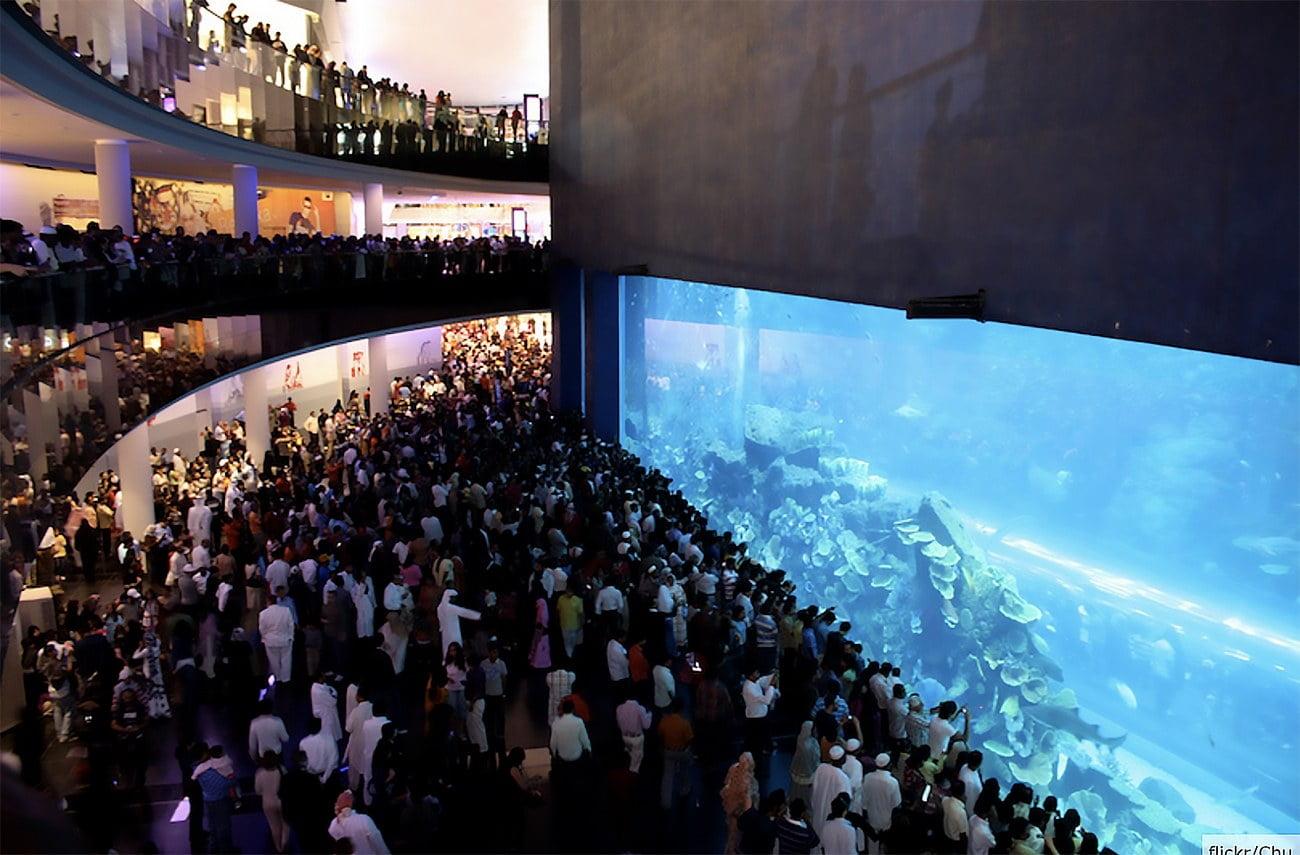 Imagem do aquário de Dubai