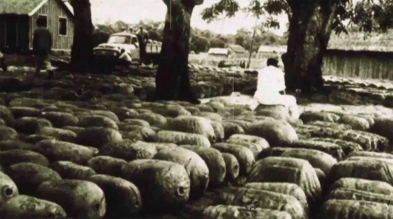 imagem de bolas do borracha de latex na Amazônia