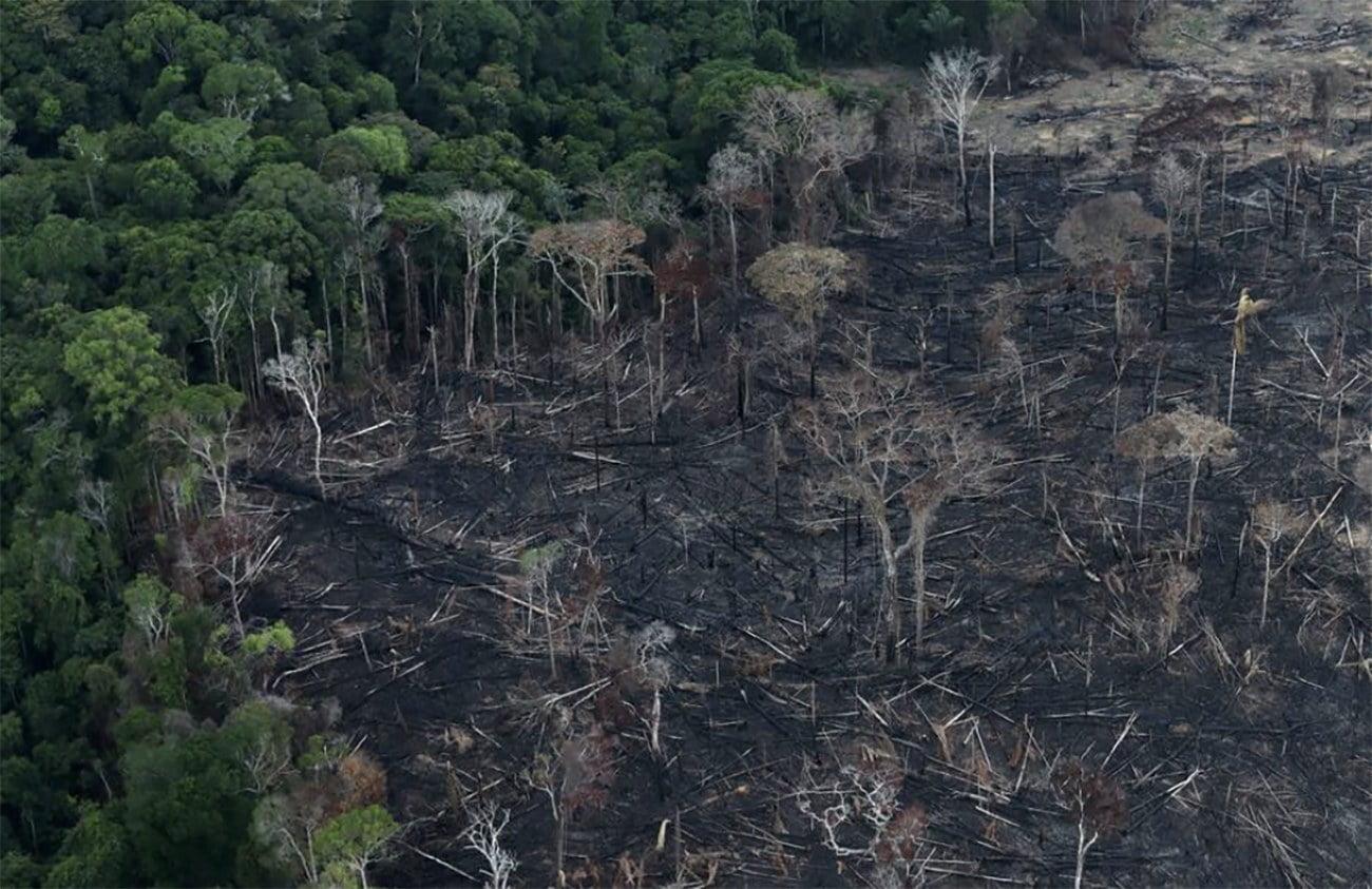 imagem de queimadas na amazônia