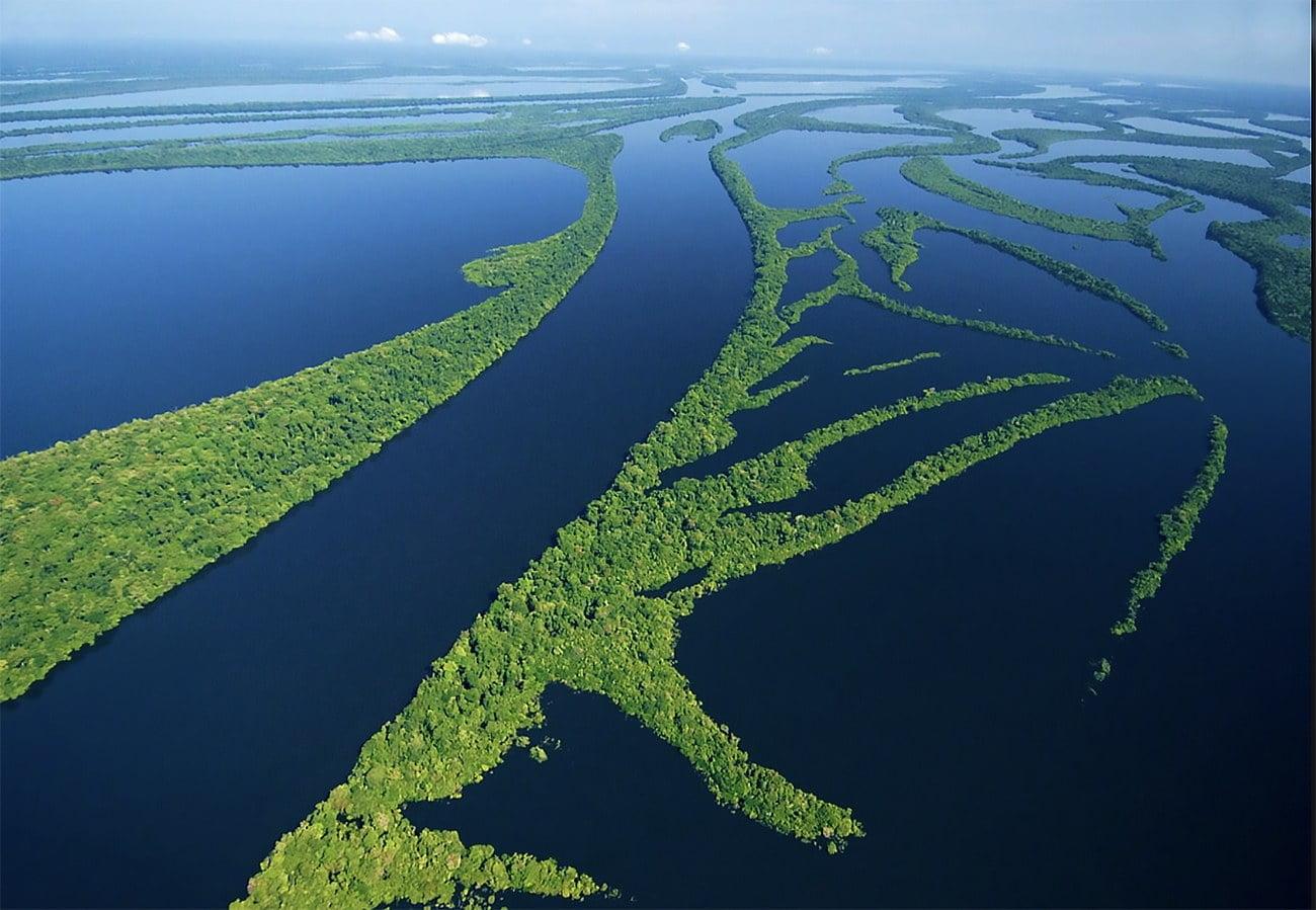 imagem do arquipélago de Anavilhanas