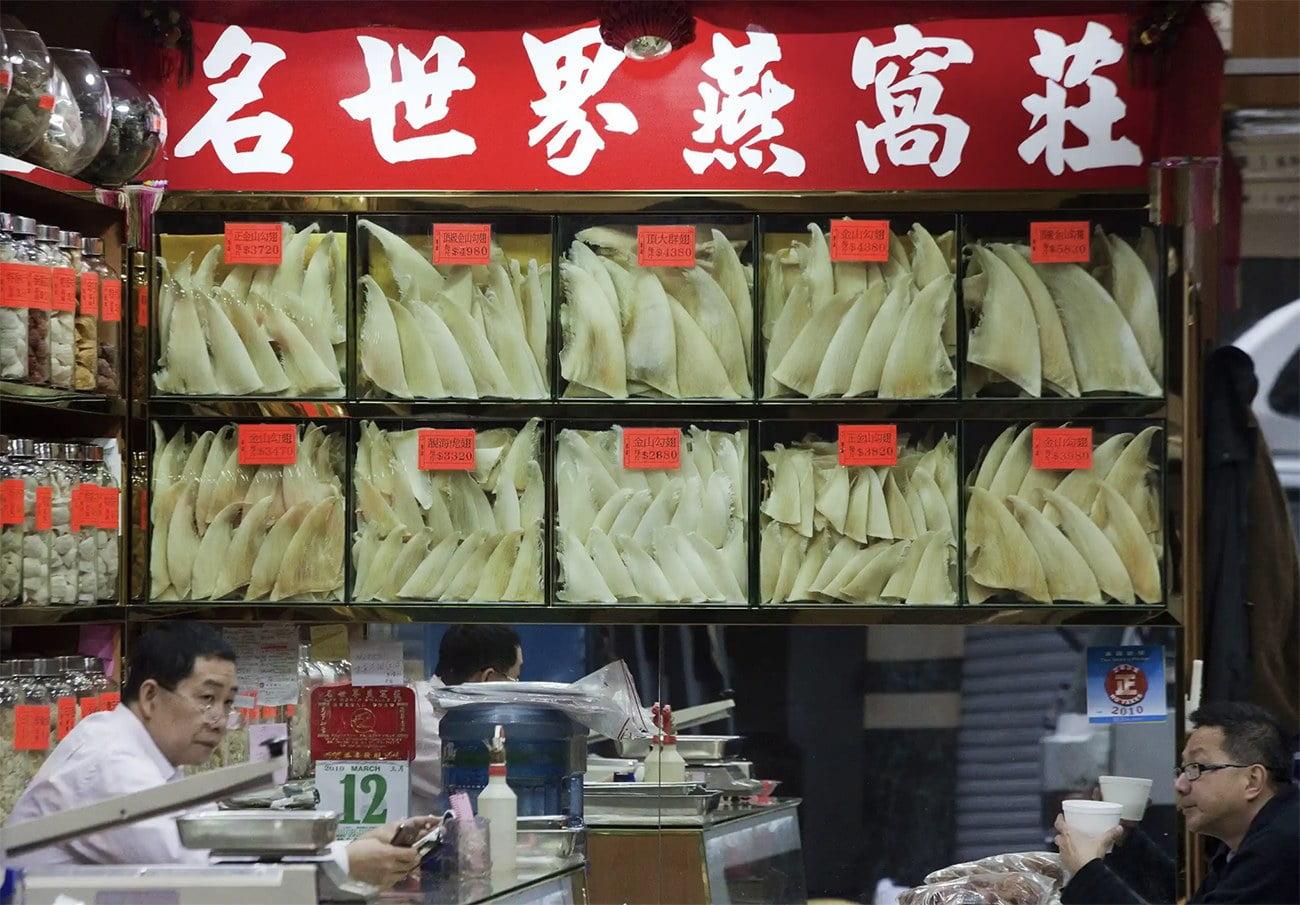 imagem de restaurante em Hong Kong que serve sopa de barbatanas de tubarão
