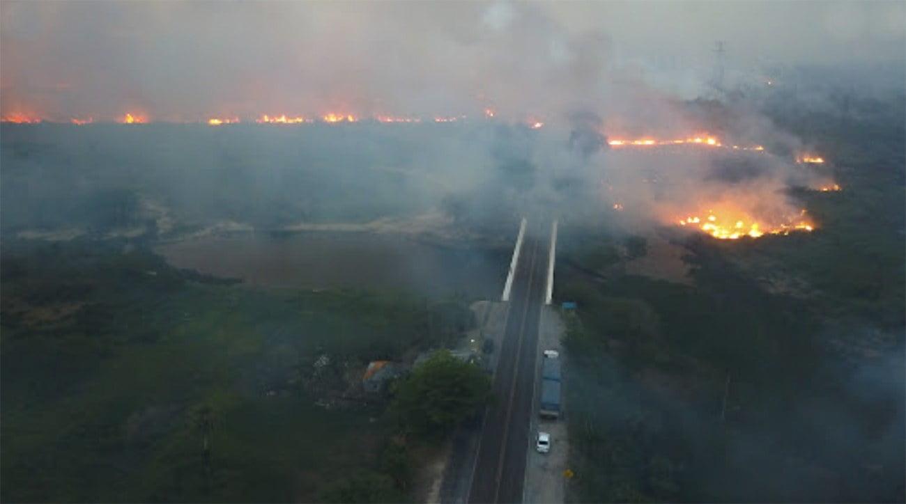 imagem de fogo no Pantanal