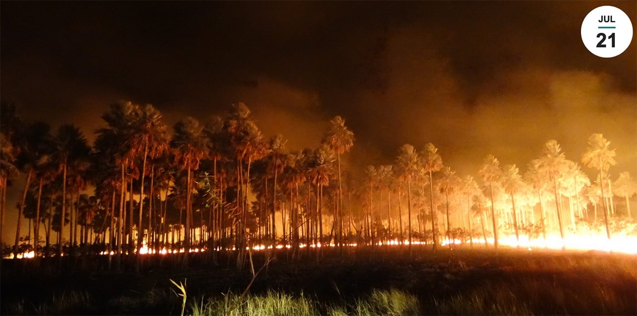 imagem de incêndio no Pantanal