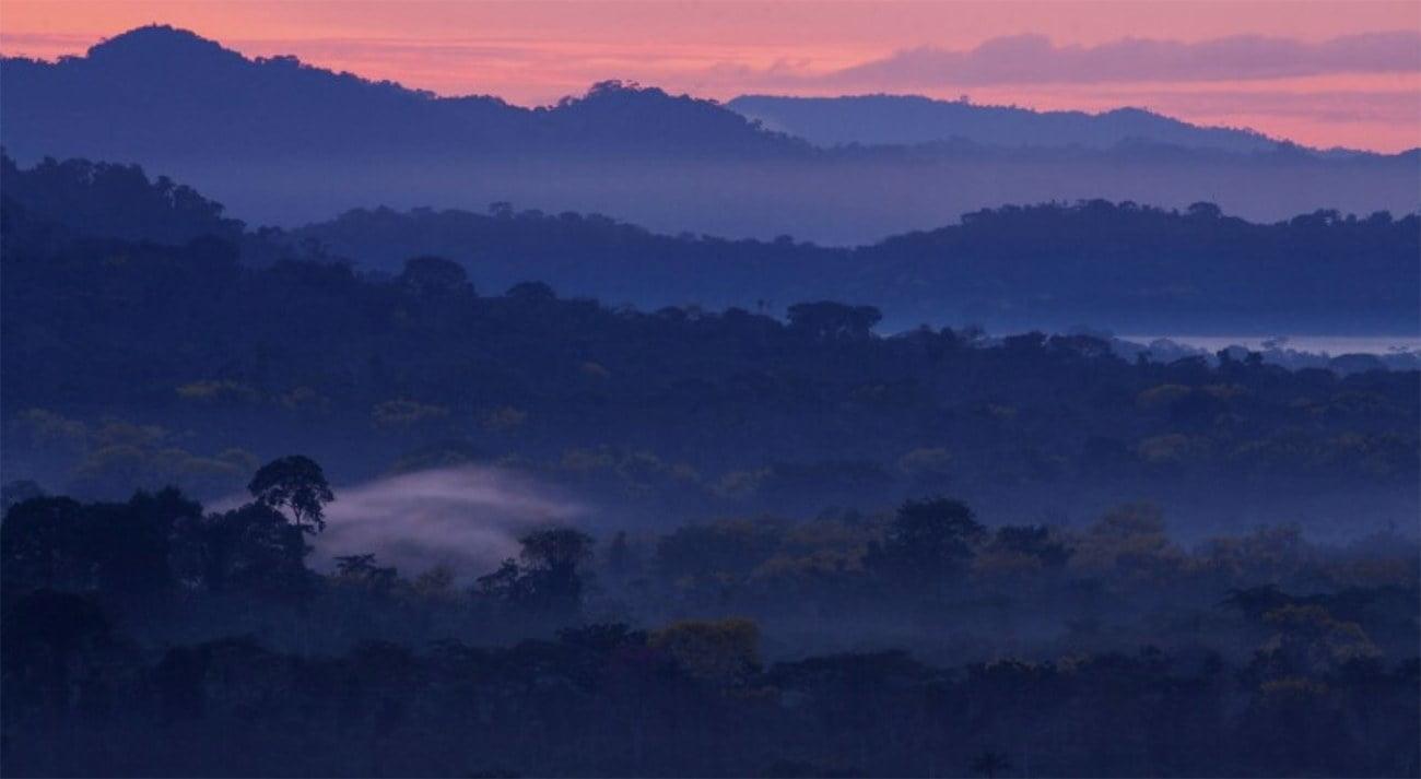 imagem de paisagem na Amazônia
