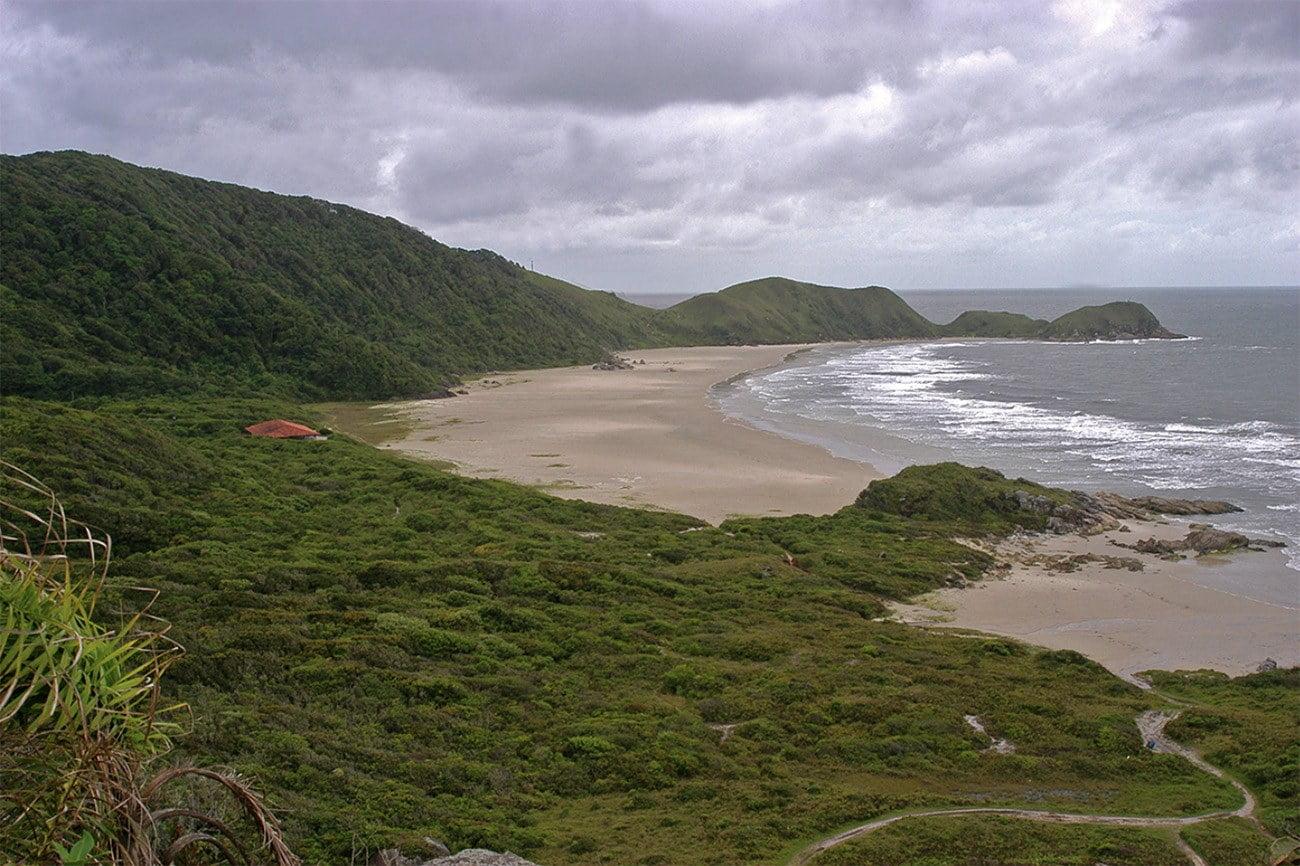 imagem das restingas da ilha do Mel