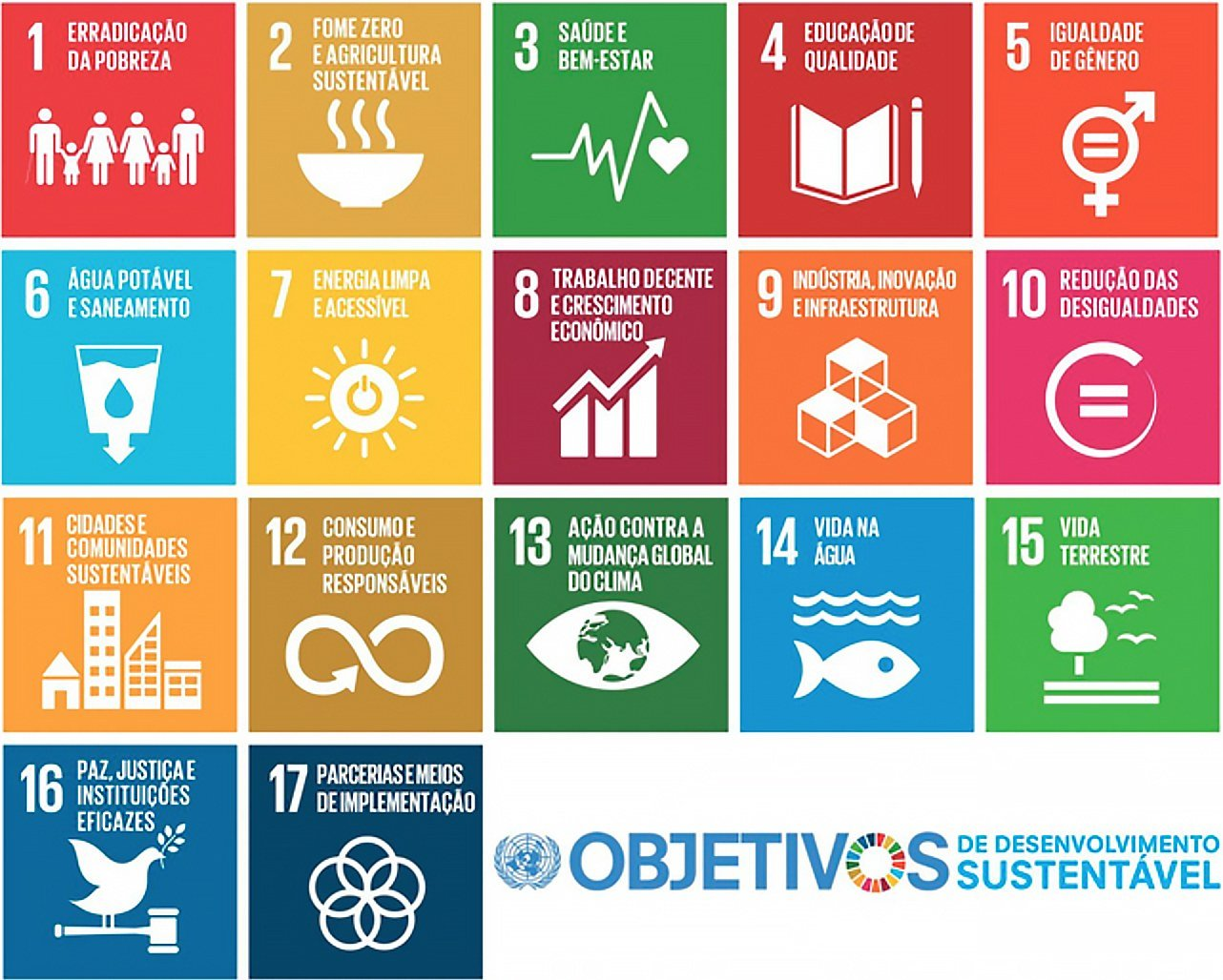 infigráfico 17 objetivos de desenvolvimento sustentável