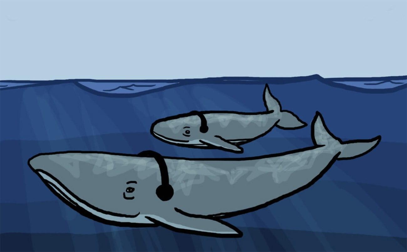 ilustração de baleias com fones de ouvido