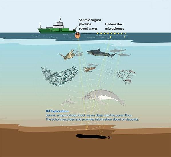 ilustração de navios trabalhando com a sísmica