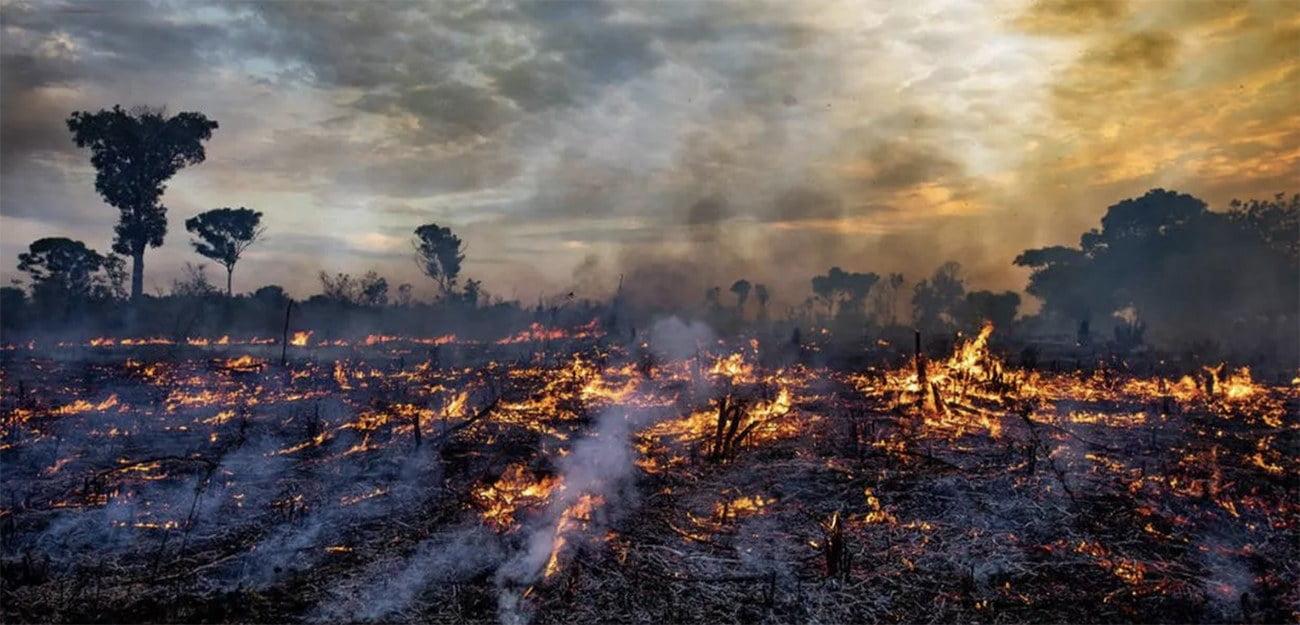 imagem da Amazonia em chamas