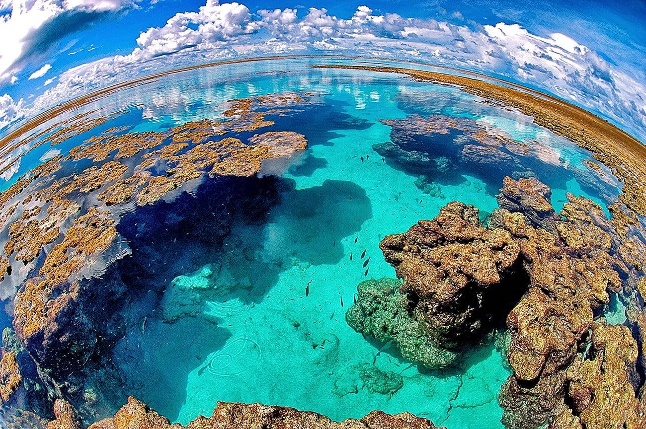 recifes de corais no Atol das Rocas