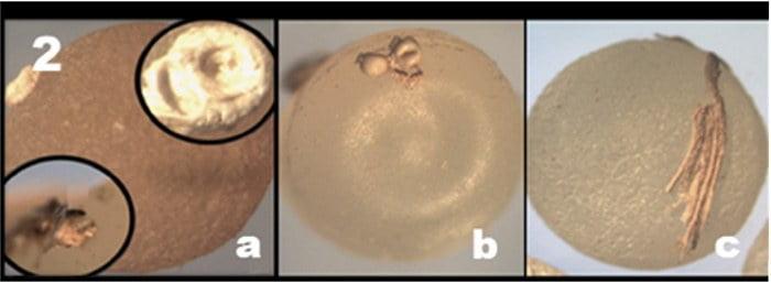 imagem de paletes de microplásticos