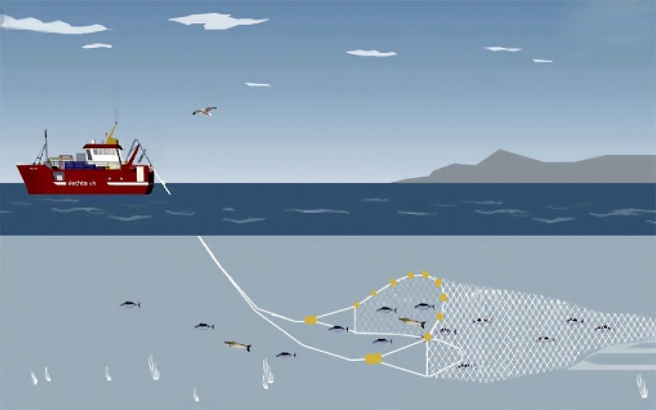 Ilustração de pesca de arrasto