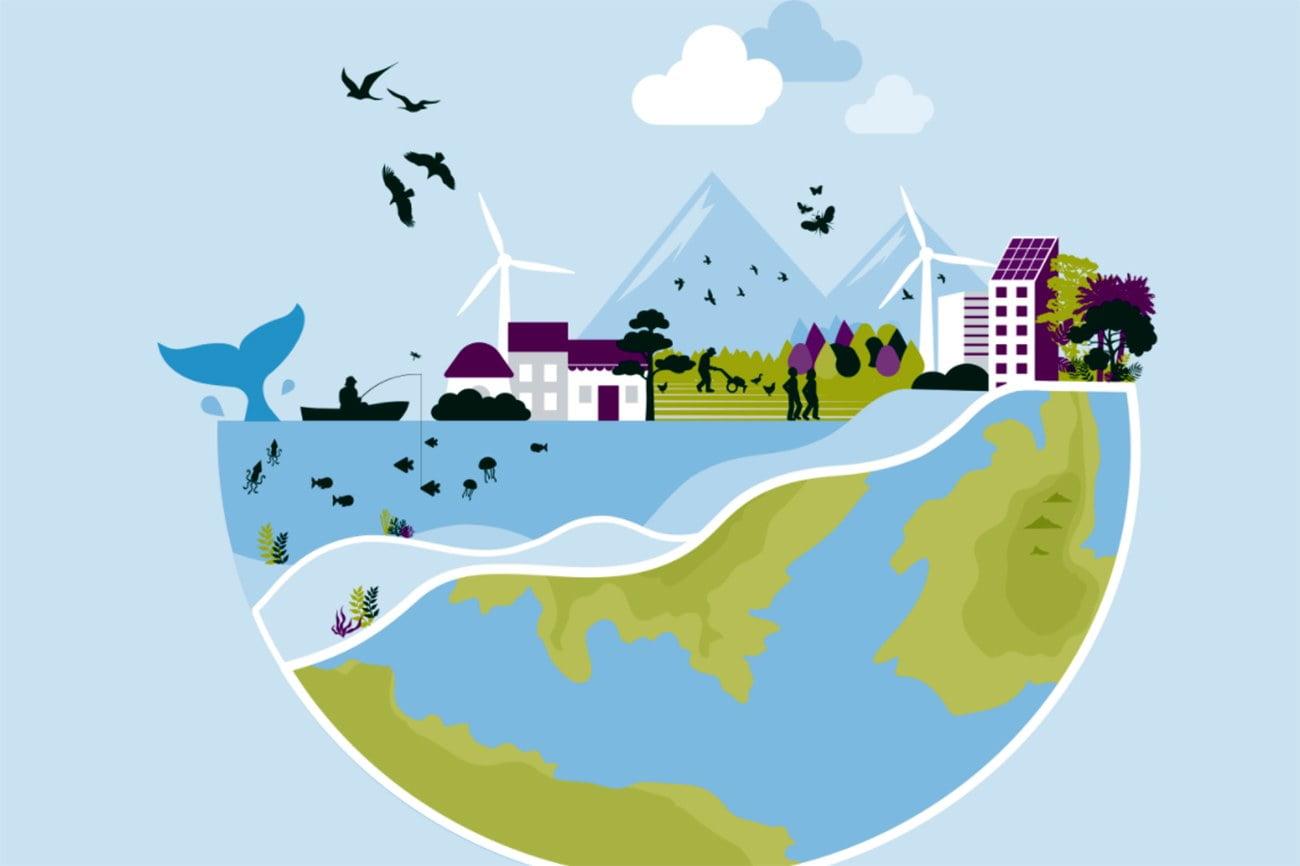 Infográgfico mostra maio ambienta saudável