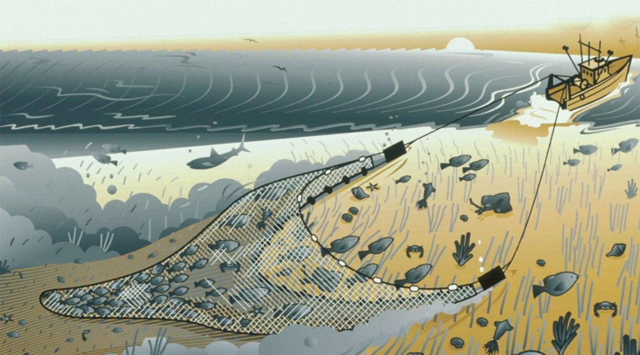 Ilustração de rede de arrasto