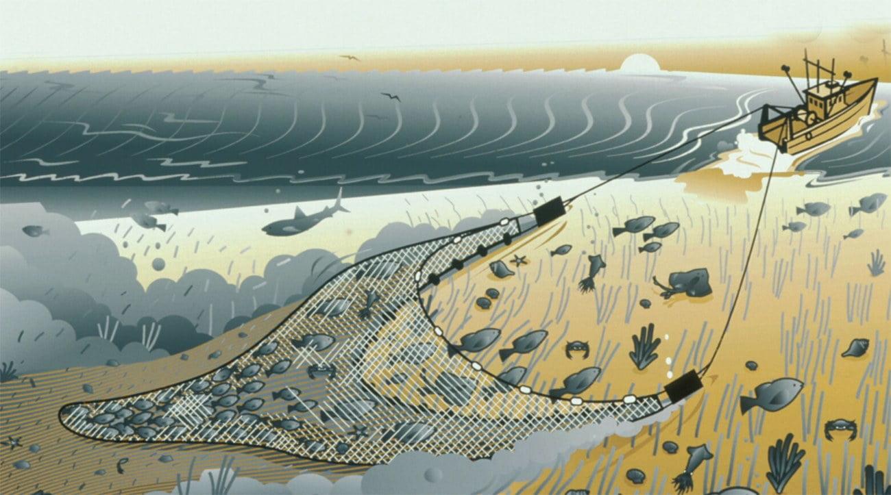 Ilustração mostra pesca de arrasto de fundo