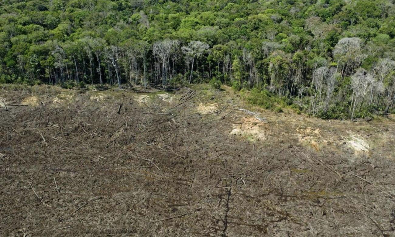 imagem de desmatamento recorde na Amazônia