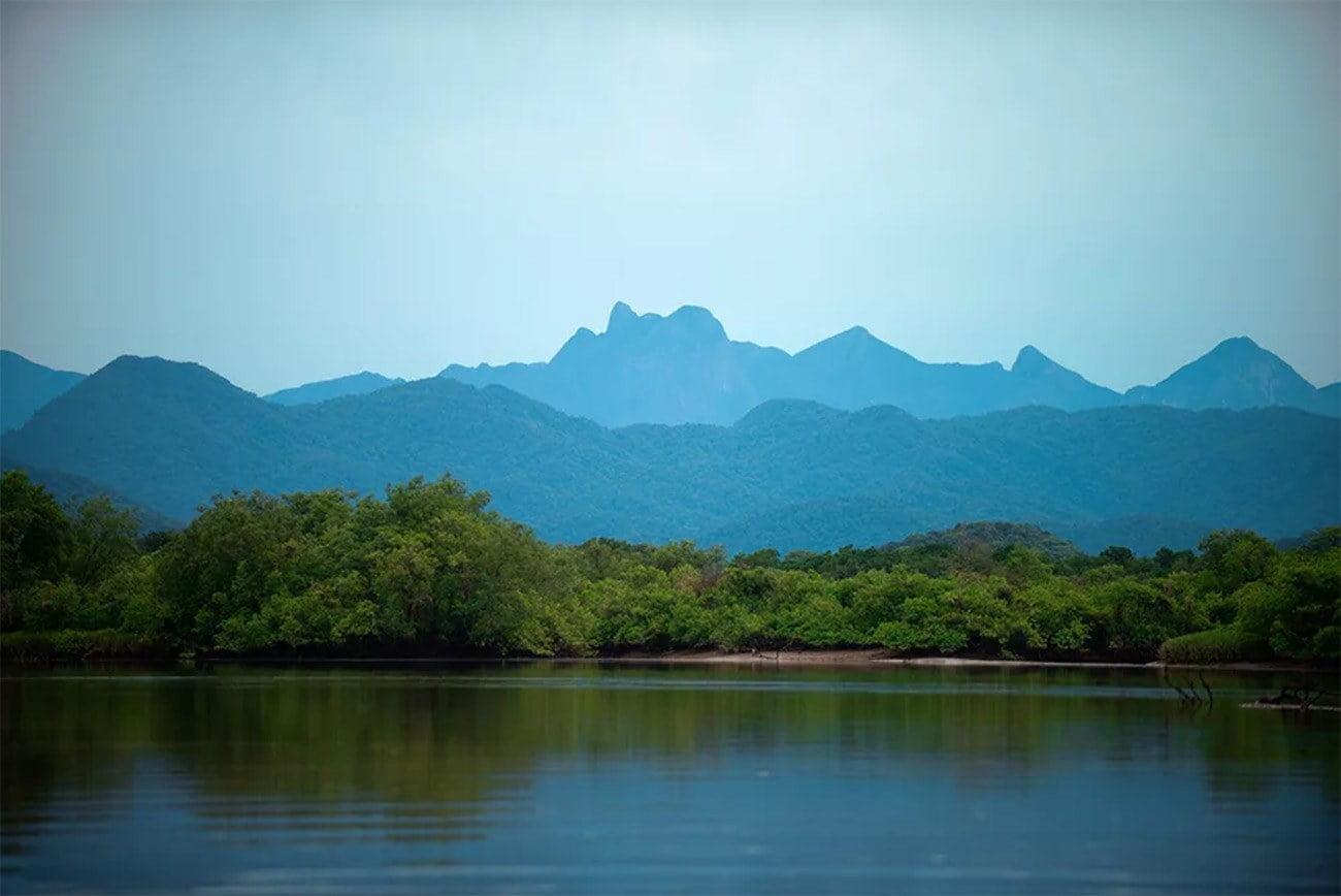 Imagem da Apa e ESEC de Guaraqueçaba