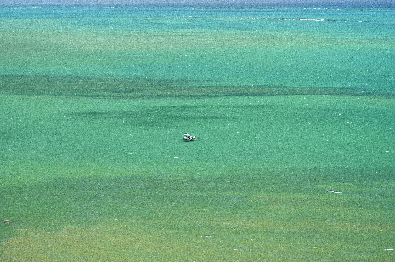 imagem mostra oceano da cor verde