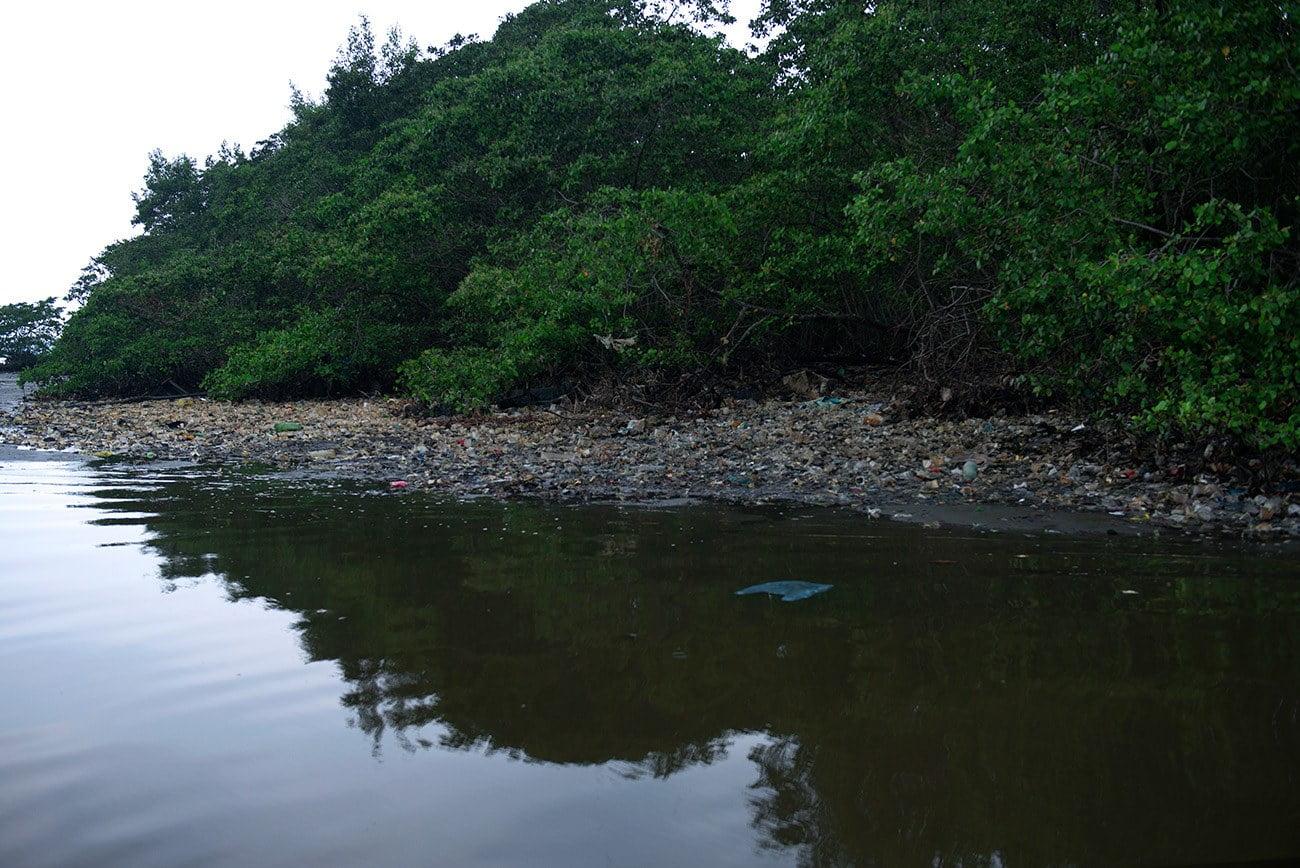 Imagem de lixo no mangue