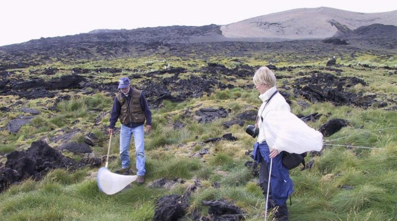 Imagem de pesquisadores em Surtsey