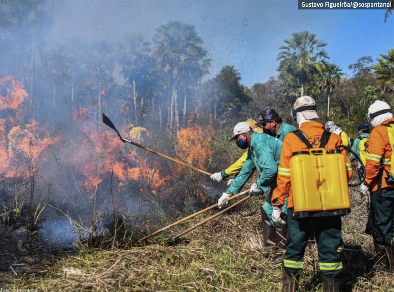Imagem de incêndios no Pantanal