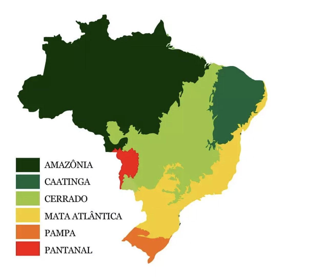 Mapa com os biomas brasileiros