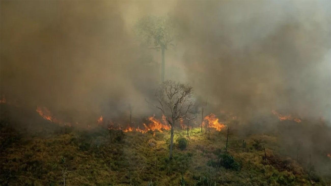 Imagem de desmatamento na Amazônia em agosto