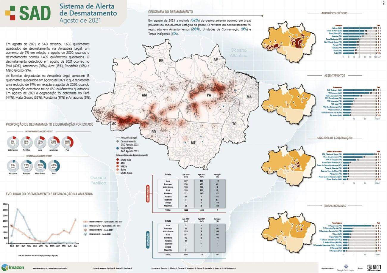 Infográfico mostra desmatamento na Amazônia em agosto