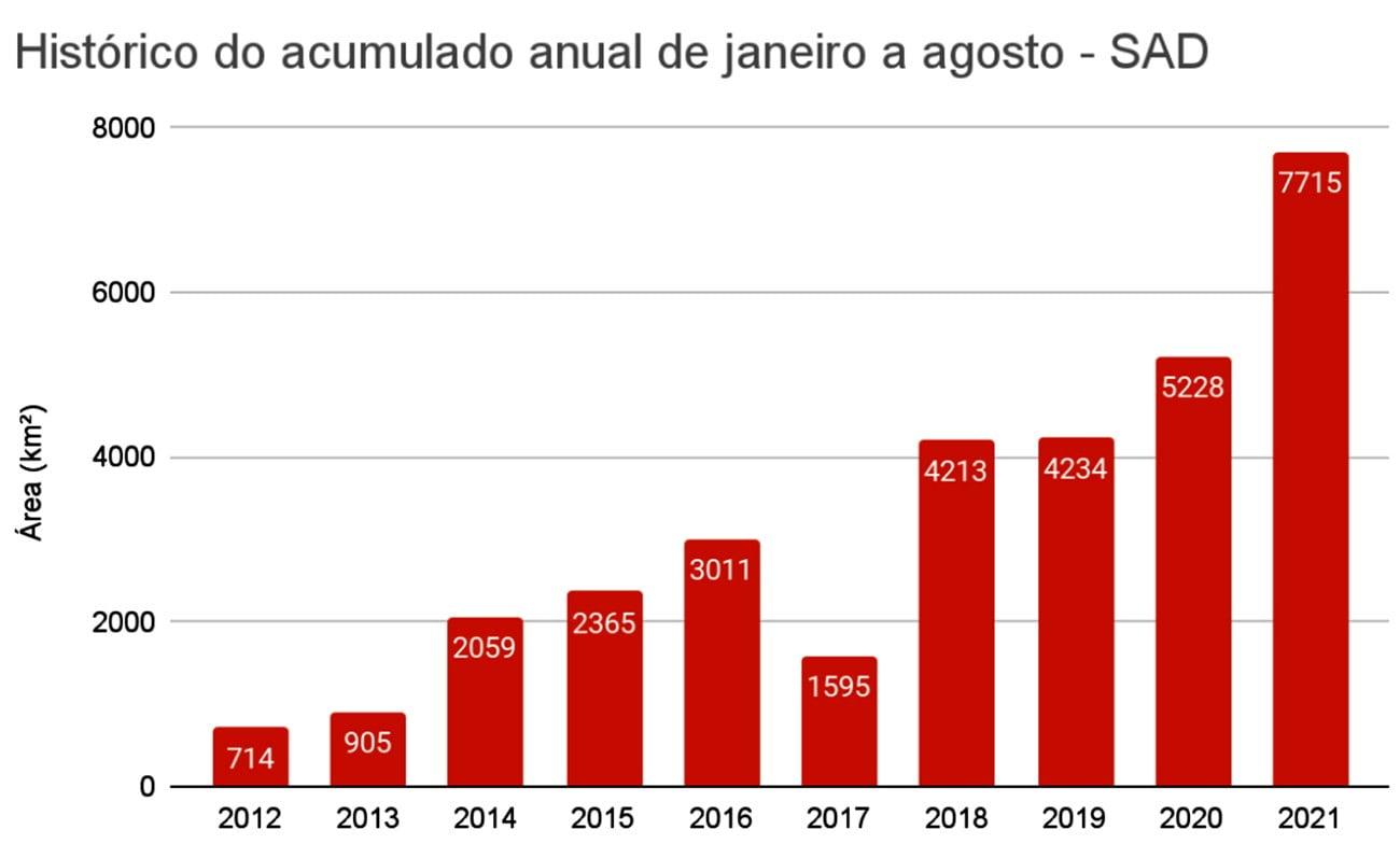 Infográfico mostra desmatamento anual de 2021 até 2021